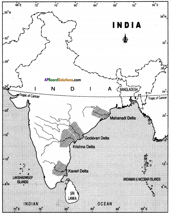 AP SSC 10th Class Social Studies Solutions Chapter 1 India Relief Features Q20