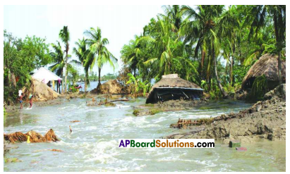AP SSC 10th Class Social Studies Solutions Chapter 4 Climate of India 10