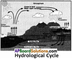 AP Board 9th Class Social Studies Important Questions Chapter 3 Hydrosphere 1