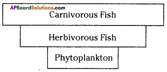 AP SSC 10th Class Biology Important Questions Chapter 9 Our Environment 13