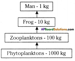 AP SSC 10th Class Biology Important Questions Chapter 9 Our Environment 5