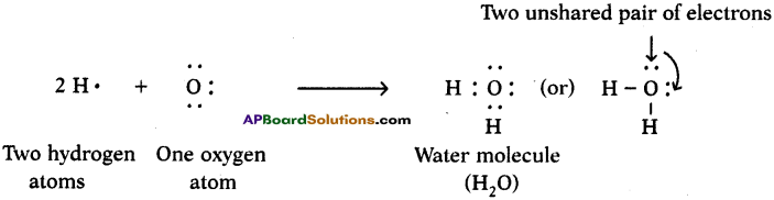 AP SSC 10th Class Chemistry Solutions Chapter 10 Chemical Bonding 12