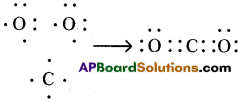 AP SSC 10th Class Chemistry Solutions Chapter 10 Chemical Bonding 16