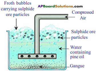 AP SSC 10th Class Chemistry Solutions Chapter 13 Principles of Metallurgy 1