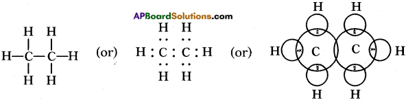AP SSC 10th Class Chemistry Solutions Chapter 14 Carbon and its Compounds 16
