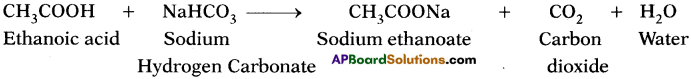AP SSC 10th Class Chemistry Solutions Chapter 14 Carbon and its Compounds 17