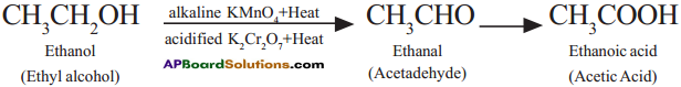AP SSC 10th Class Chemistry Solutions Chapter 14 Carbon and its Compounds 20