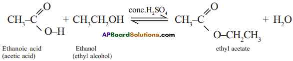 AP SSC 10th Class Chemistry Solutions Chapter 14 Carbon and its Compounds 4