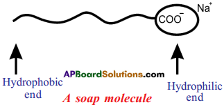 AP SSC 10th Class Chemistry Solutions Chapter 14 Carbon and its Compounds 9