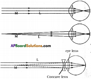 AP SSC 10th Class Physics Solutions Chapter 7 Human Eye and Colourful World 1