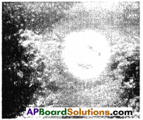 AP SSC 10th Class Physics Solutions Chapter 7 Human Eye and Colourful World 18