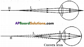 AP SSC 10th Class Physics Solutions Chapter 7 Human Eye and Colourful World 2
