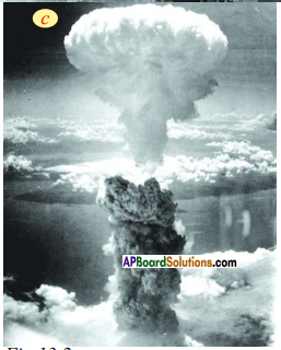 AP SSC 10th Class Social Studies Solutions Chapter 13 The World Between Wars 1900-1950 Part I 4