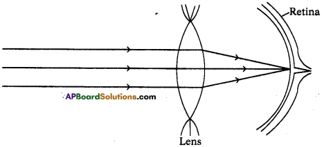 AP SSC 10th Class Physics Important Questions Chapter 7 Human Eye and Colourful World 18