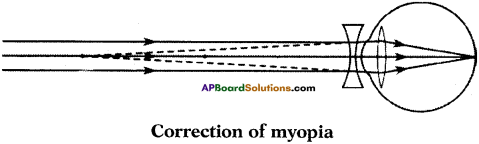 AP SSC 10th Class Physics Important Questions Chapter 7 Human Eye and Colourful World 6