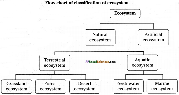 AP Board 8th Class Biology Important Questions Chapter 7 Different Ecosystems 3