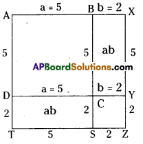 AP Board 8th Class Maths Solutions Chapter 11 Algebraic Expressions Ex 11.2 3