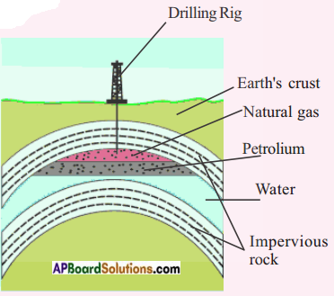 AP Board 8th Class Physical Science Important Questions Chapter 7 Coal and Petroleum 1