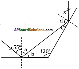 AP Board 8th Class Physical Science Solutions Chapter 10 Reflection of Light at Plane Surfaces 10
