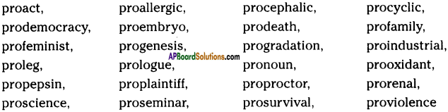 AP SSC 10th Class English Solutions Chapter 4A Rendezvous with Ray 7