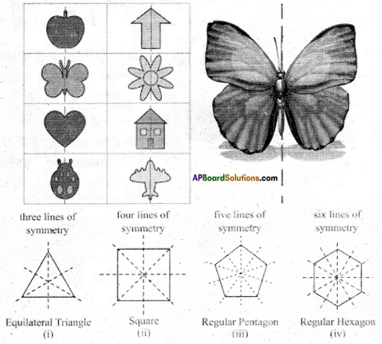 AP Board 6th Class Maths Notes Chapter 9 2D-3D Shapes 12