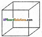 AP Board 6th Class Maths Notes Chapter 9 2D-3D Shapes 16