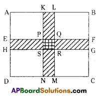 AP Board 7th Class Maths Solutions Chapter 13 Area and Perimeter Ex 6 3