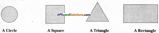 AP Board 7th Class Maths Solutions Chapter 14 Understanding 3D and 2D Shapes Ex 4 2