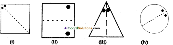 AP Board 7th Class Maths Solutions Chapter 15 Symmetry Ex 2 5