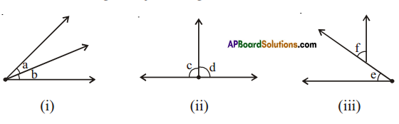 AP Board 7th Class Maths Solutions Chapter 4 Lines and Angles Ex 4 1