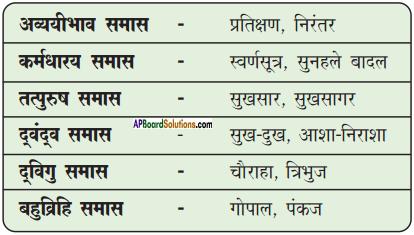 AP Board 9th Class Hindi Solutions Chapter 7 मेरा जीवन 3