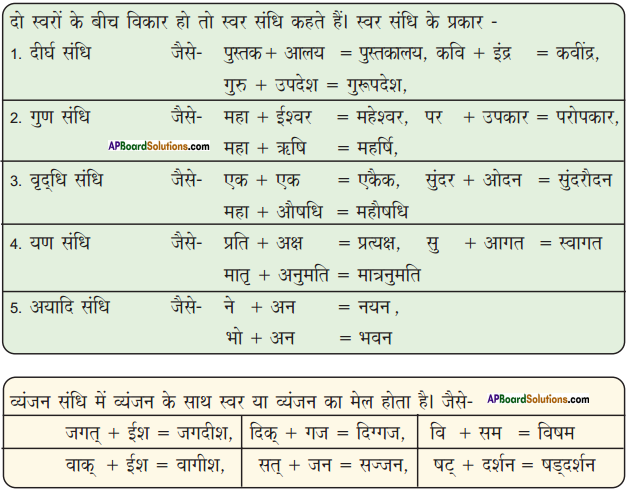 AP Board 9th Class Hindi Solutions Chapter 8 यक्ष प्रश्न 5
