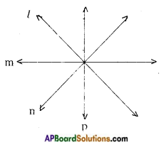 AP Board 9th Class Maths Notes Chapter 4 Lines and Angles 10
