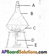 AP Board 6th Class Science Important Questions Chapter 4 Water 9
