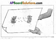 AP Board 6th Class Science Important Questions Chapter 6 Fun with Magnets 6