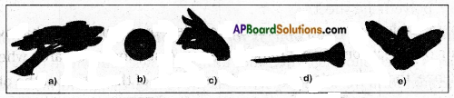 AP Board 6th Class Science Solutions Chapter 11 Shadows - Images 4