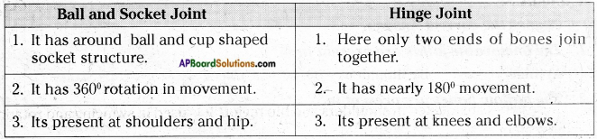 AP Board 6th Class Science Solutions Chapter 12 Movement and Locomotion 6