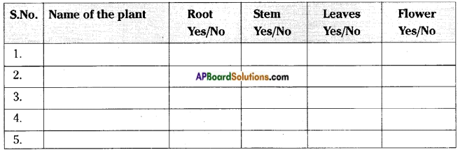 AP Board 6th Class Science Solutions Chapter 2 Knowing About Plants 6