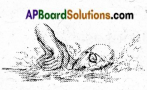 AP Board 6th Class Science Solutions Chapter 4 Water 2