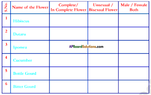 AP Board 7th Class Science Important Questions Chapter 12 Reproduction in Plants 6