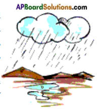 AP Board 7th Class Science Important Questions Chapter 2 Acids and Bases 17