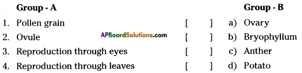 AP Board 7th Class Science Solutions Chapter 12 Reproduction in Plants 2