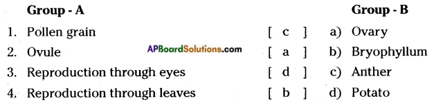 AP Board 7th Class Science Solutions Chapter 12 Reproduction in Plants 3