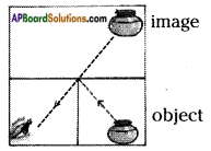 AP Board 7th Class Science Solutions Chapter 9 Reflection of Light 5