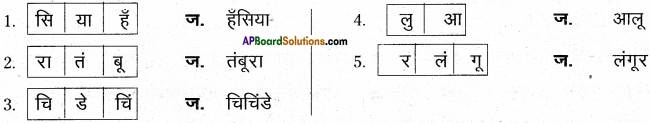 AP Board 6th Class Hindi Solutions सन्नद्धता कार्यक्रम Chapter 11 मम्मी की रोटी गोल.. गोल.. 5