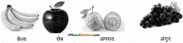AP Board 6th Class Hindi Solutions सन्नद्धता कार्यक्रम Chapter 12 मौखिक खेल 3