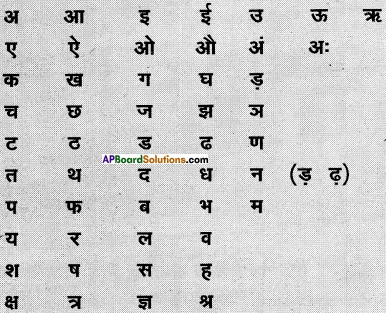 AP Board 6th Class Hindi Solutions सन्नद्धता कार्यक्रम Chapter 13 खट्टे अंगूर 2