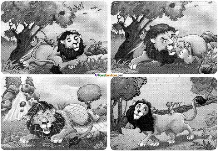 AP Board 6th Class Hindi Solutions सन्नद्धता कार्यक्रम Chapter 16 शेर और चूहा 1