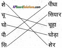 AP Board 6th Class Hindi Solutions सन्नद्धता कार्यक्रम Chapter 16 शेर और चूहा 6