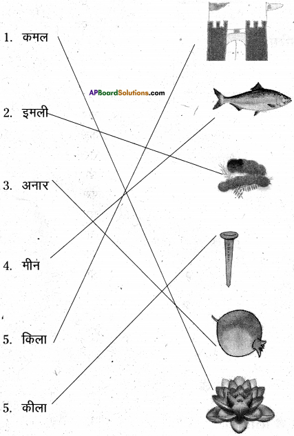 AP Board 6th Class Hindi Solutions Chapter 2 तितली 17